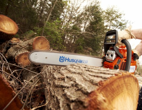 Common Chainsaw Problems Solved